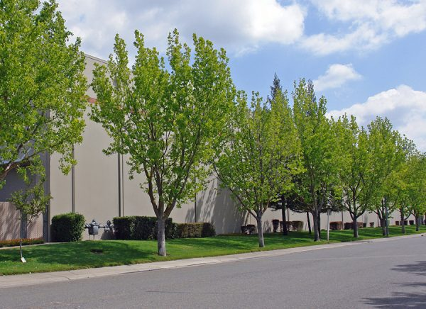 1733 Sports Drive Building